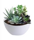Semi-circle Wall-mounted Flower Pot