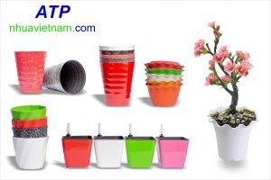 chậu nhựa trồng cây trồng hoa